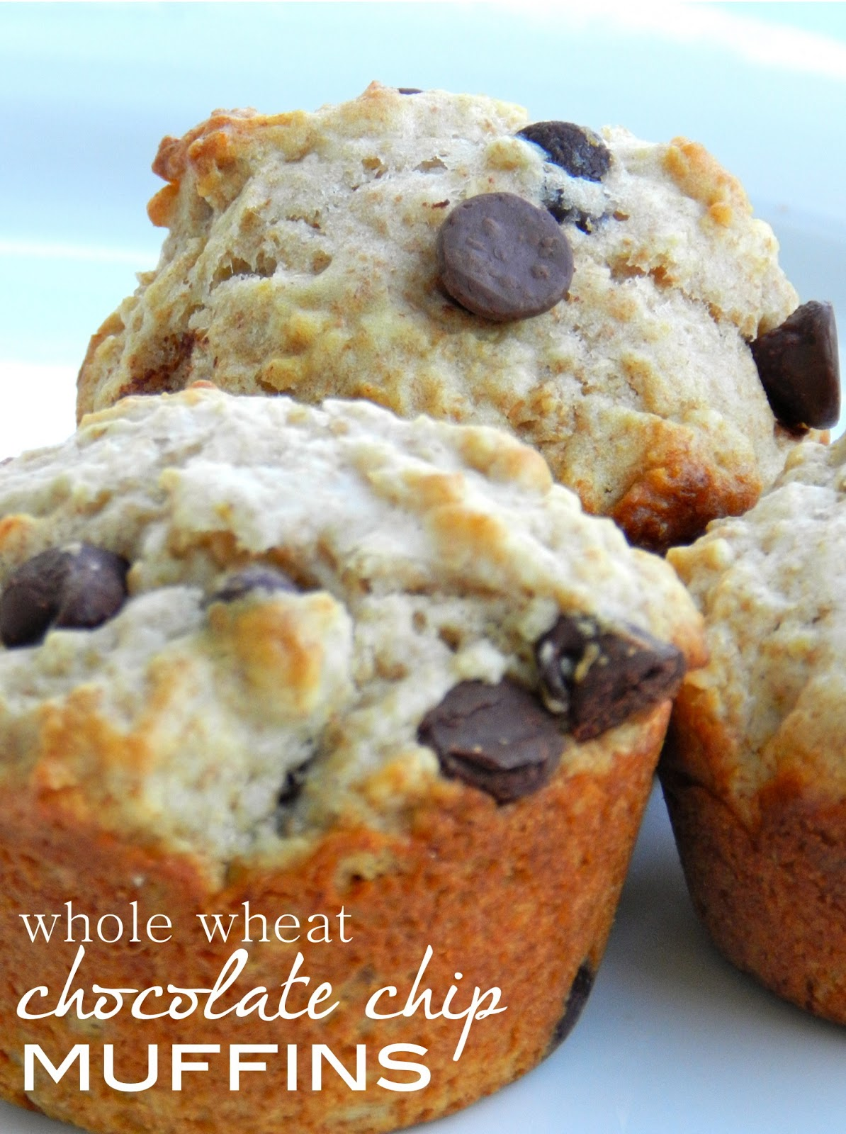 Perfect Morning Muffins: Whole wheat chocolate chip ...