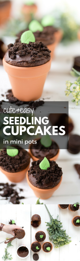 these adorable dirt cupcakes double as decoration and are so fun for kids to decorate