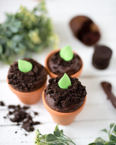 Seedling Cupcakes