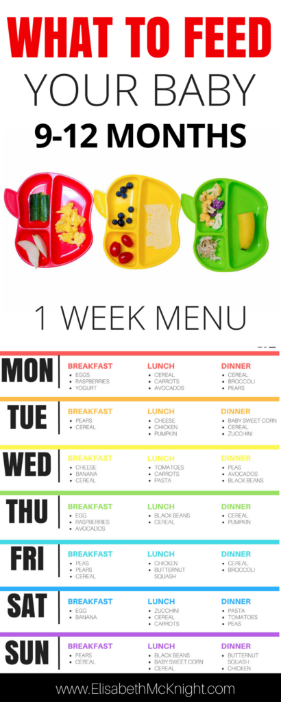 wonder what to feed your baby? sample baby menu and feeding chart for 9 -