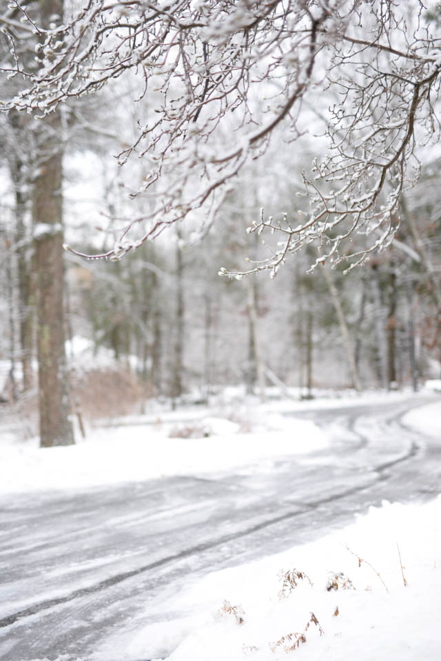 Walking in a Winter Wonderland this Christmas Season by Boston lifestyle blogger Elisabeth McKnight