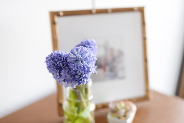 Favorite Living Room Update by popular Boston lifestyle blogger Elisabeth McKnight