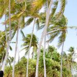 Guadeloupe Day 1