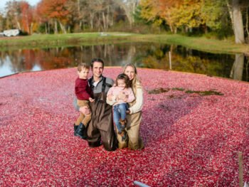Massachusetts Cranberry Bogs!