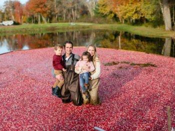 Massachusetts Cranberry Bogs!
