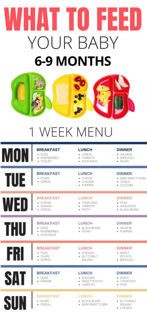 what to feed baby 6-9 months with sample menu and free download