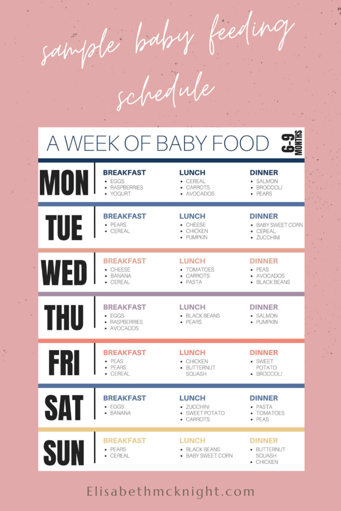 sample baby menu for 6-9 months